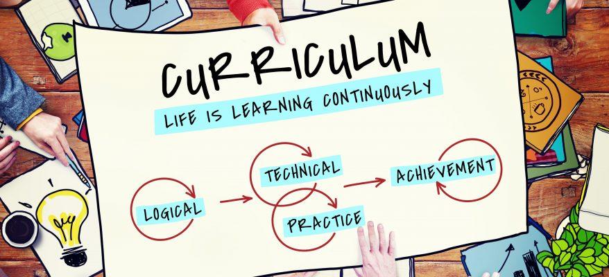 esempi di curriculum